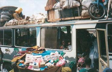 Ivoire5